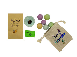DIY wildflower seed bomb craft kit. shipped  to your door.  fun feed the bees craft kit for kids