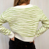 Simplee Pale green v-neak women jumper Animal grain female ladies women jumper Contrast color soft women jumper