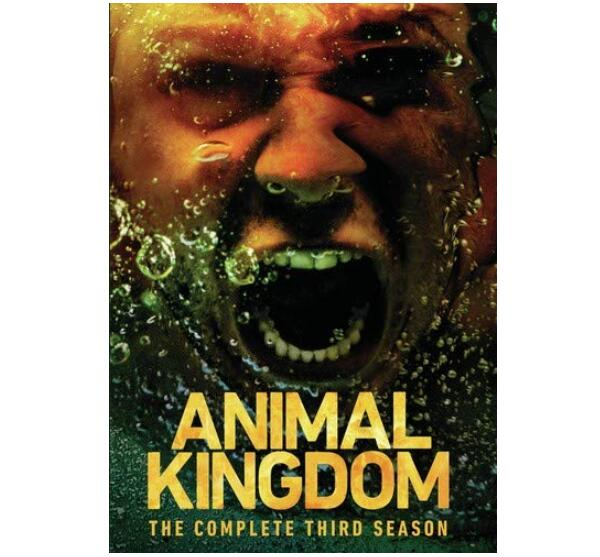 Animal Kingdom Season Three (DVD)