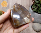Agate Shield #1