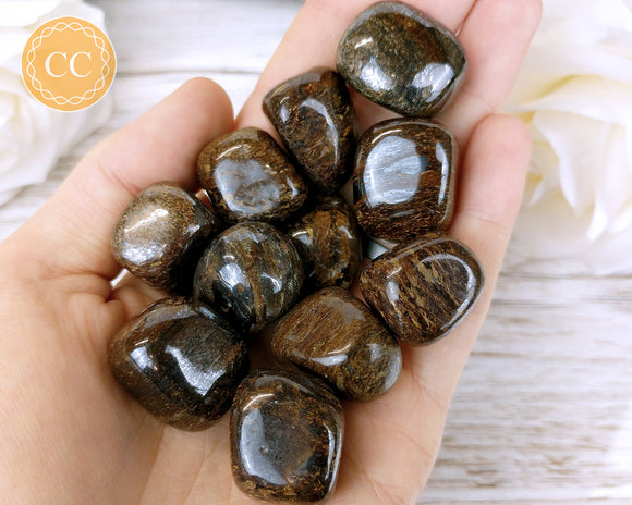 Bronzite tumbled crystal