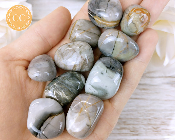 Picasso Jasper tumbled crystal