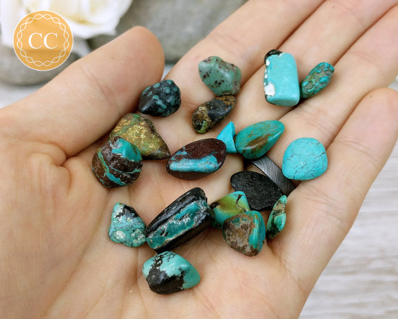 Genuine turquoise chips