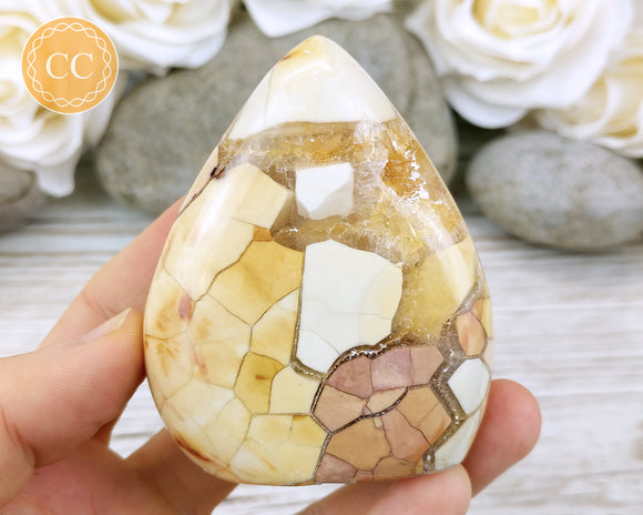 Eggshell Jasper Shield #1