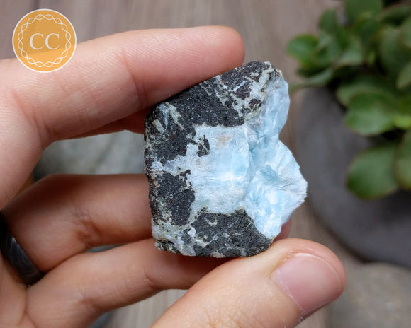 Larimar Top Polished Slice