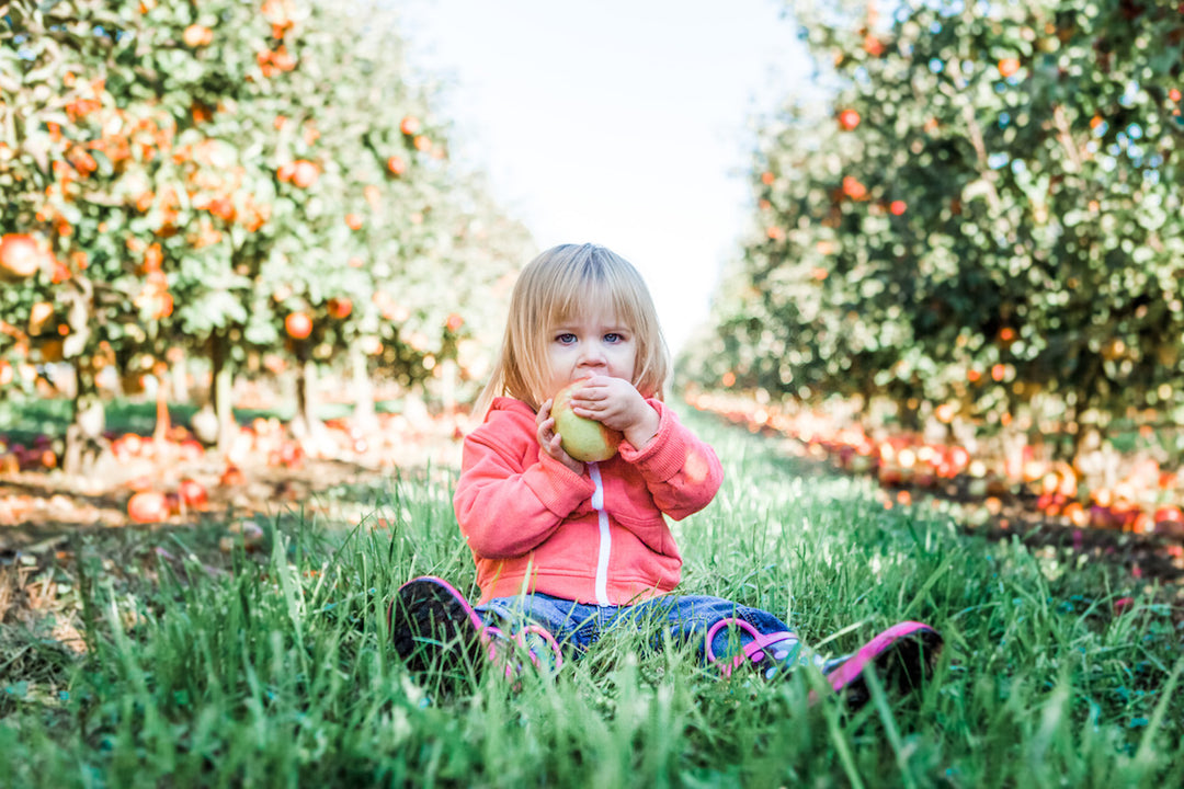 10 Healthy Snacks Every Toddler Should Be Eating