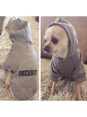 serious security dog - FREE