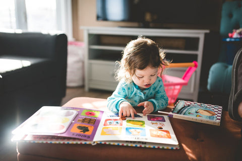 5 Must Have Board Books For Toddlers