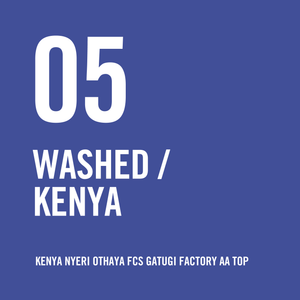 Kenya Nyeri Othaya FCS Gatugi Factory AA TOP Washed 200g