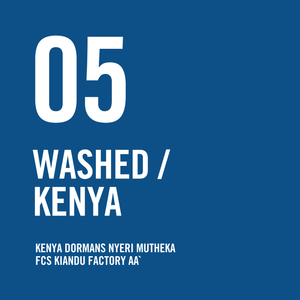 Kenya Dormans Nyeri Mutheka FCS Kiandu Factory AA Washed 200g - Urban Coffee Roaster
