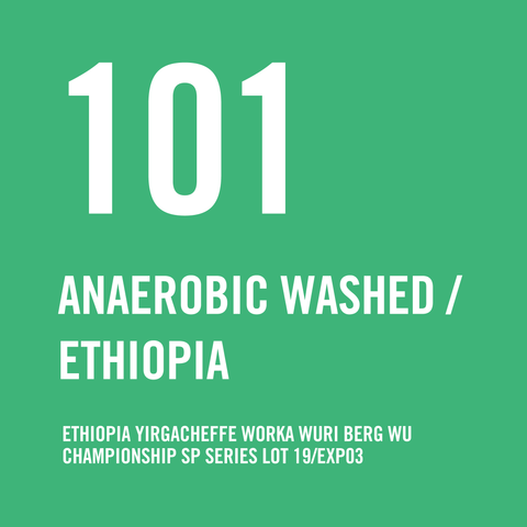 Ethiopia Yirgacheffe Worka Wuri Berg Wu Championship SP Series Lot 19/EXP03 Anaerobic Washed 200g