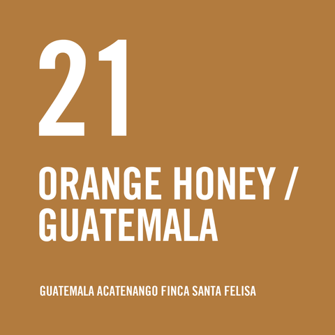Guatemala Acatenango Finca Santa Felisa Red Bourbon Orange Honey 200g