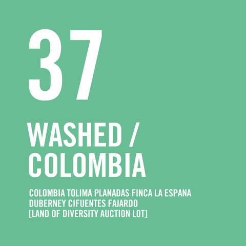 Colombia Tolima Planadas Finca La España Duberney Cifuentes Fajardo Washed [Land Of Diversity Auction Lot] 200g