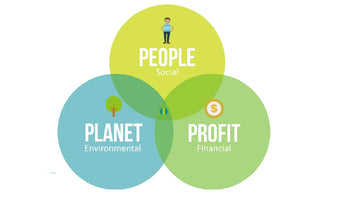How To Be A More Sustainable Business