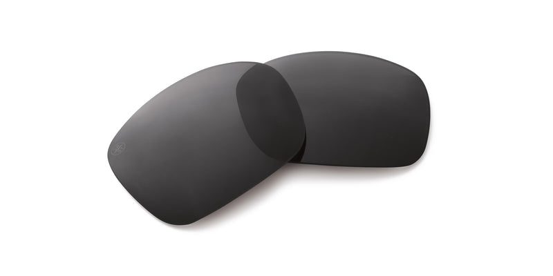 Palisades Replacement Polarized Lenses