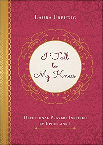 I FALL TO MY KNEES DEVOTIONAL PRAYERS By Laura Freudig