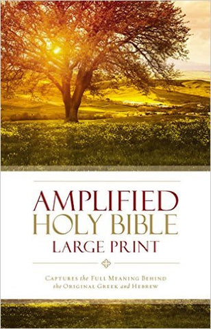 AMPLIFIED 2015 ED HOLY BIBLE LARGE PRINT HARDCOVER