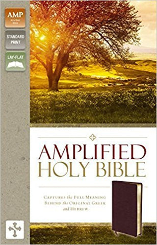 AMPLIFIED 2015 ED HOLY BIBLE BURGUNDY BONDED LTHR