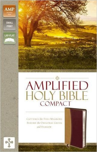 AMPLIFIED 2015 ED COMPACT BIBLE CAMEL/BURGUNDY LL