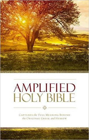 AMPLIFIED 2015 ED HOLY BIBLE BURGUNDY HC