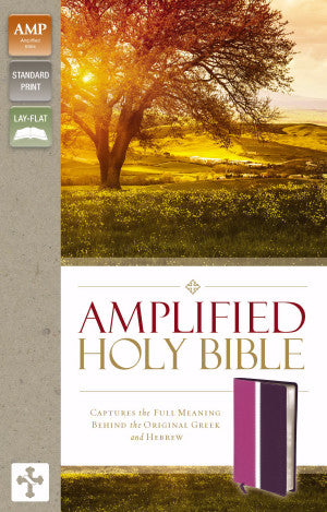 AMPLIFIED 2015 ED HOLY BIBLE DARK ORCHID/DEEP PLUM