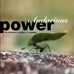 Audacious Power - CD