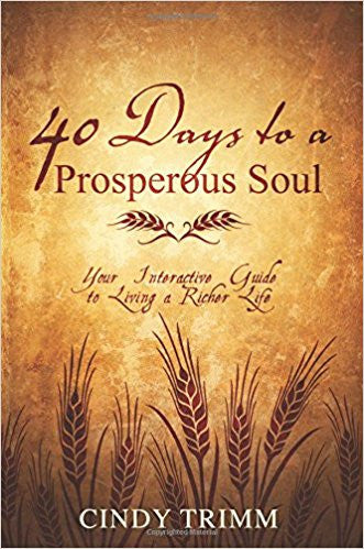 40 DAYS TO A PROSPEROUS SOUL INTERACTIVE GUIDE by Cindy Trimm
