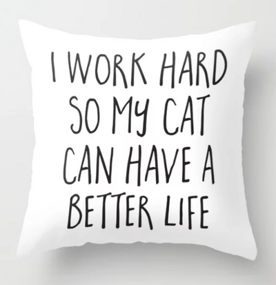 TOP 10 Best Cat Throw Pillows For Your Inner Cat Lady