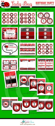 Lady Bug Birthday Party Package