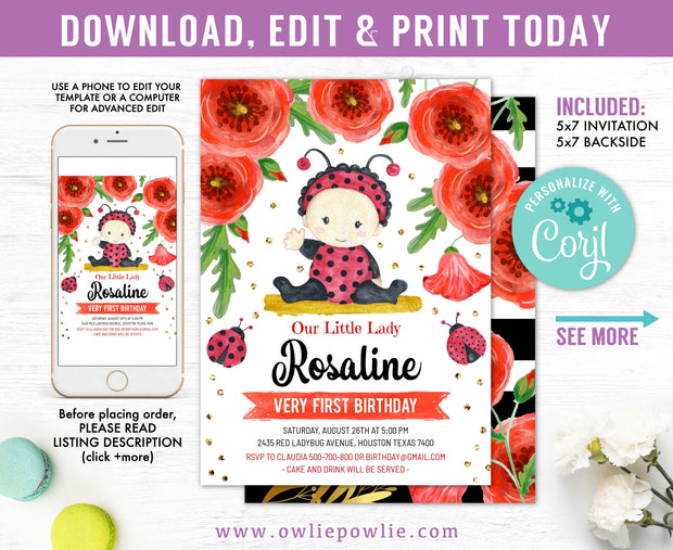 Baby Ladybug First Birthday Invitation Party Printable Template