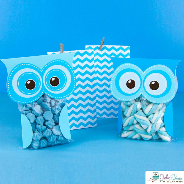 Hoot Owl Birthday Party Package