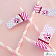 Pink Vintage Circus Birthday Party Package