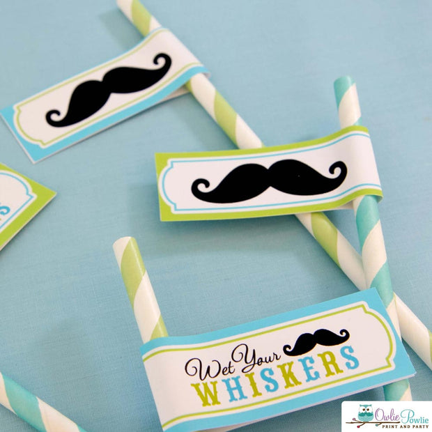 Mustache Bash Baby Shower Party Package