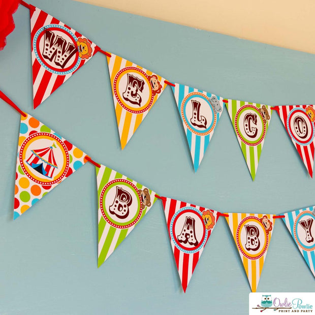 Vintage Circus Baby Shower Party Package