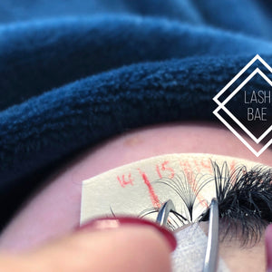 Refresher Lash Courses