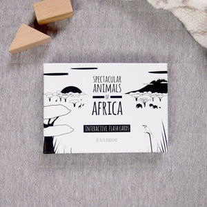 Spectacular animals of Africa flash card box