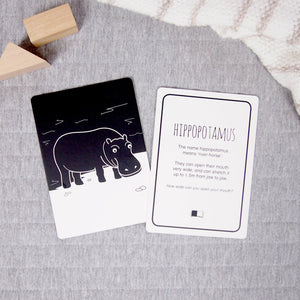 Hippopotamus flash card front and back