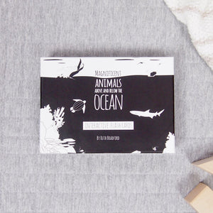 Magnificent Animals Above and Below the Oceans Flash Cards