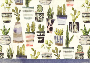 Watercolour Succulent Cards & Envelopes, Box of 14