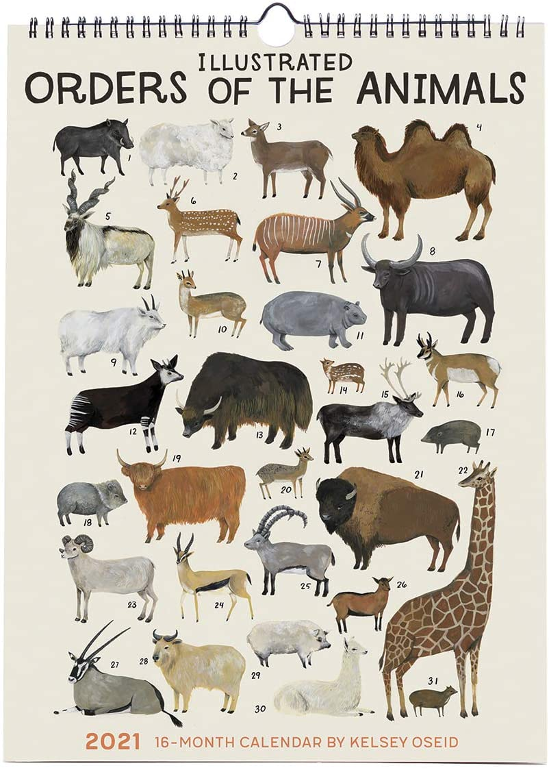Illustrated Order of the Animals 2021 Calendar