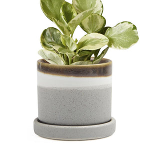 Big Minute 2 Ceramic Pot & Saucer, Mocha Cement