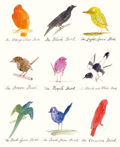 Bird Drawings Card