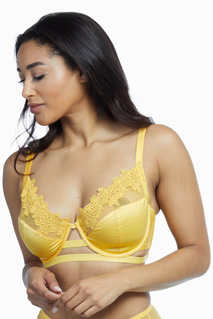 Playful Promises Vivienne Mustard Net Satin and Lace Trim Fuller Bust Bra