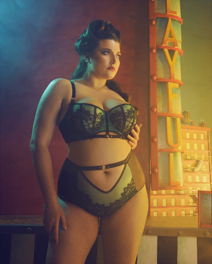 Emelda High Waist Brief Curve