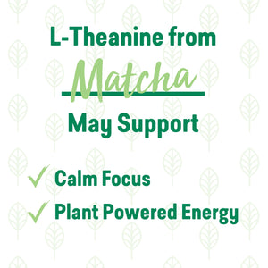 Matcha Latte Super Herb Elixir (Single)