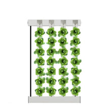 Load image into Gallery viewer, 4-Tower ZipGrow™ Farm Wall (5ft / 1.5m height)