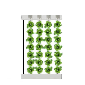 4-Tower ZipGrow™ Farm Wall (5ft / 1.5m height)