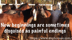 New beginnings are sometimes disguised as painful endings
