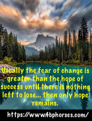 Usually the fear of change is greater than the hope of success until there is nothing left to lose.. then only hope remains