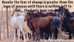 Usually the fear of change is greater than the hope of success until there is nothing left to lose..then only hope remains